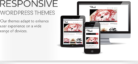 WordPress responsive Themes For Online Business