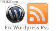 How to fix rss feed Error in wordpress?