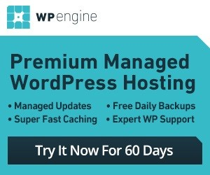 Premium wordpress hosting by wp engine